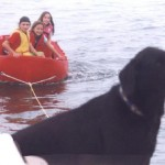 family friendly safety dinghy